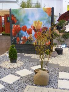 Beispiel Gartengestaltung
